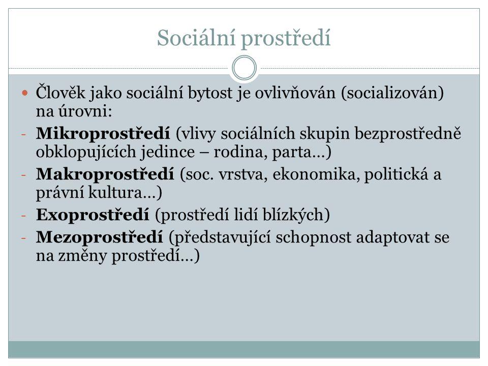 Sociální prostředí Člověk jako sociální bytost je ovlivňován (socializován) na úrovni: