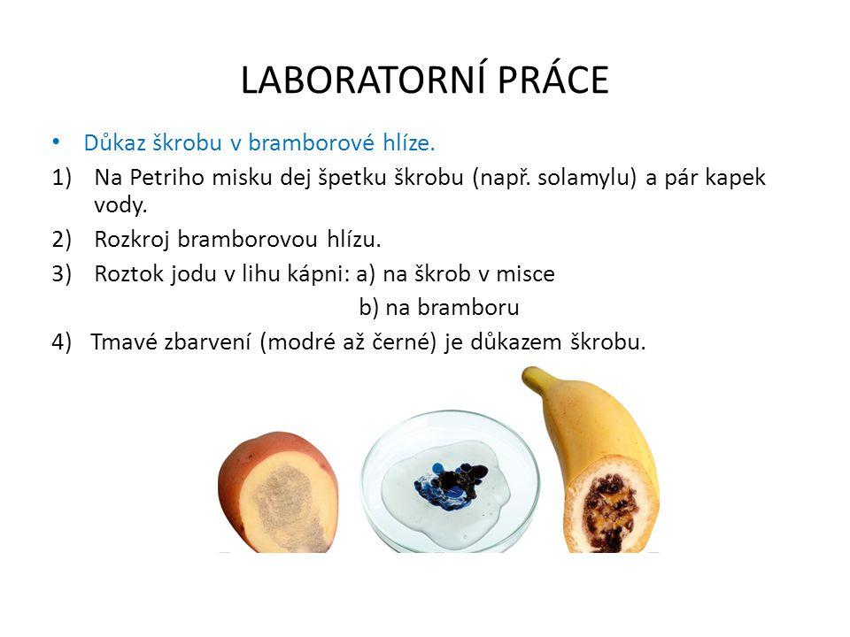 LABORATORNÍ PRÁCE Důkaz škrobu v bramborové hlíze.