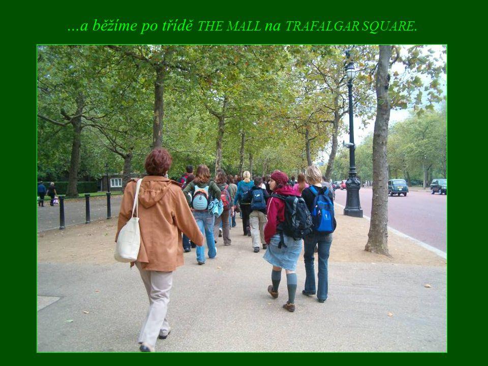 …a běžíme po třídě THE MALL na TRAFALGAR SQUARE.