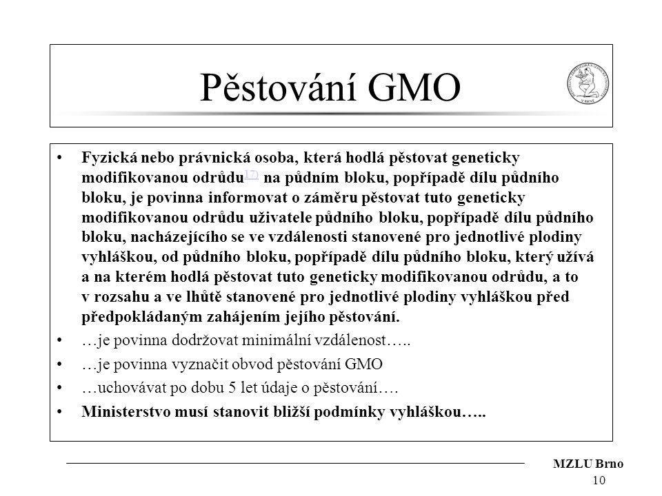 Pěstování GMO