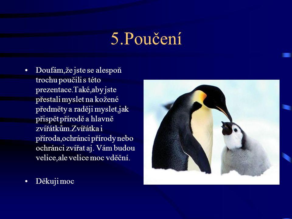 5.Poučení