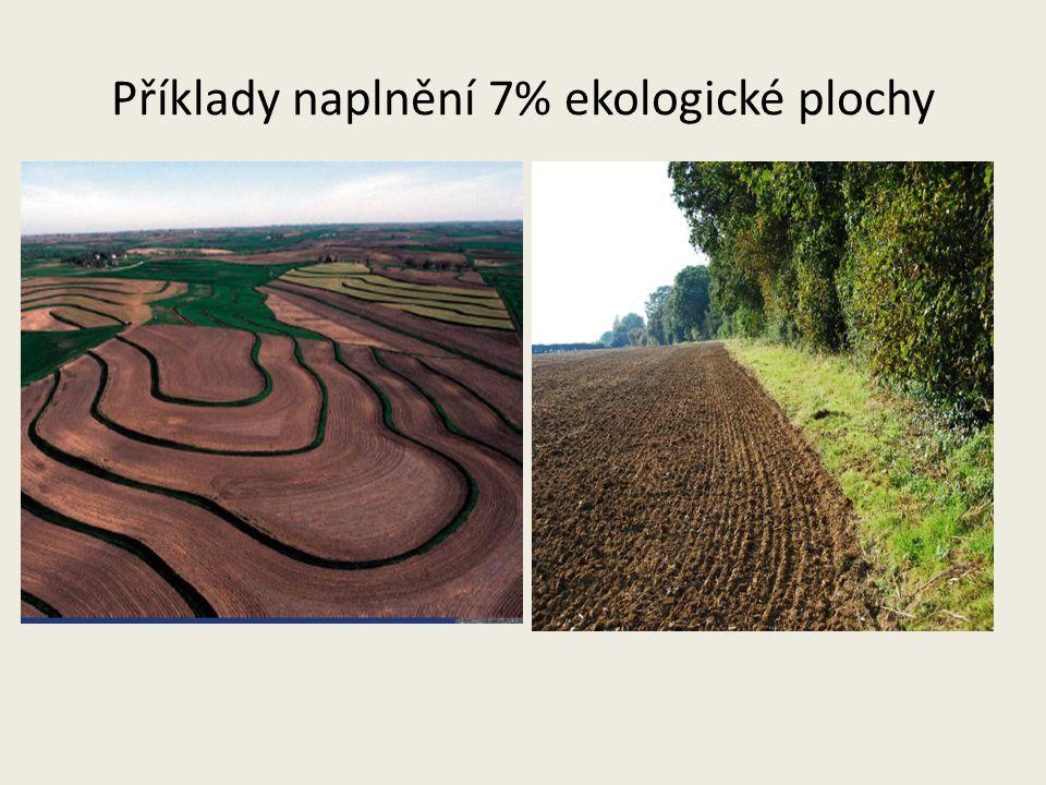 Příklady naplnění 7% ekologické plochy