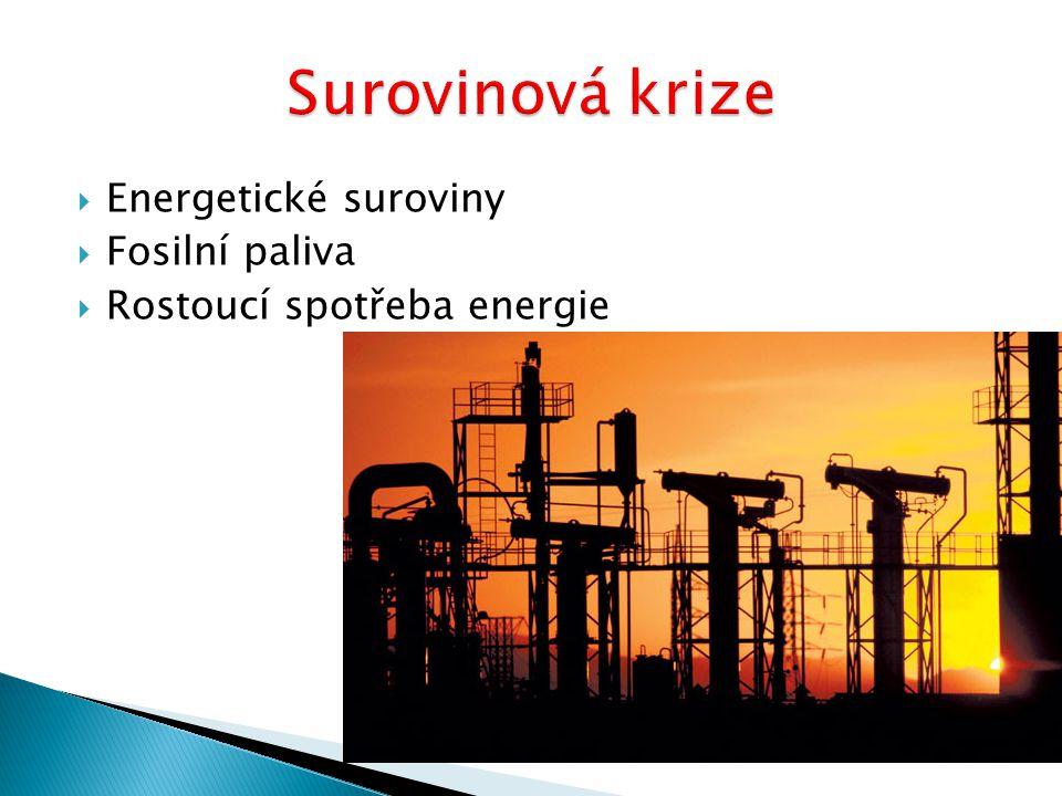 Surovinová krize Energetické suroviny Fosilní paliva