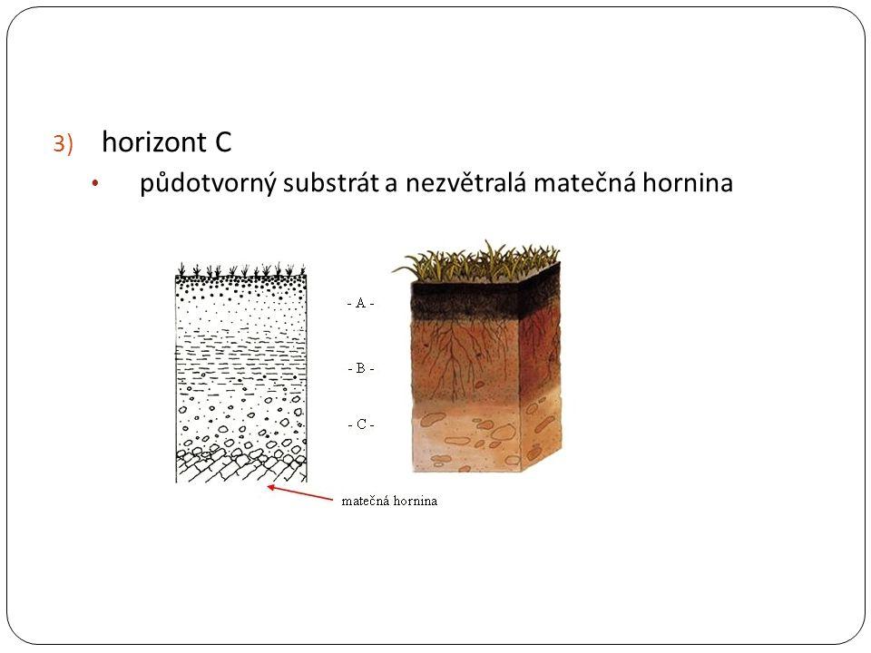 horizont C půdotvorný substrát a nezvětralá matečná hornina