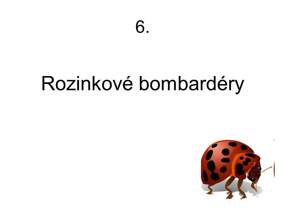 6. Rozinkové bombardéry