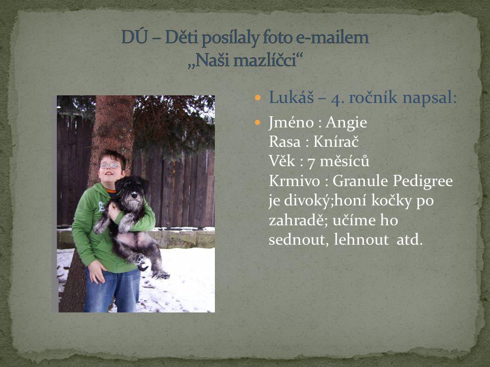 DÚ – Děti posílaly foto e-mailem ,,Naši mazlíčci''
