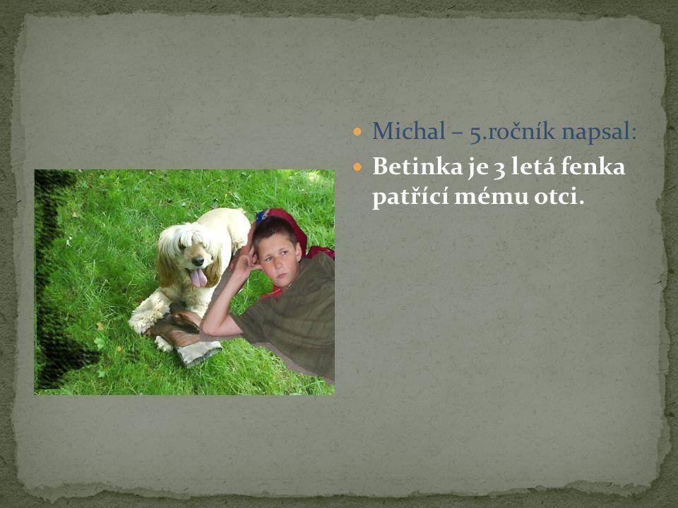 Michal – 5.ročník napsal: