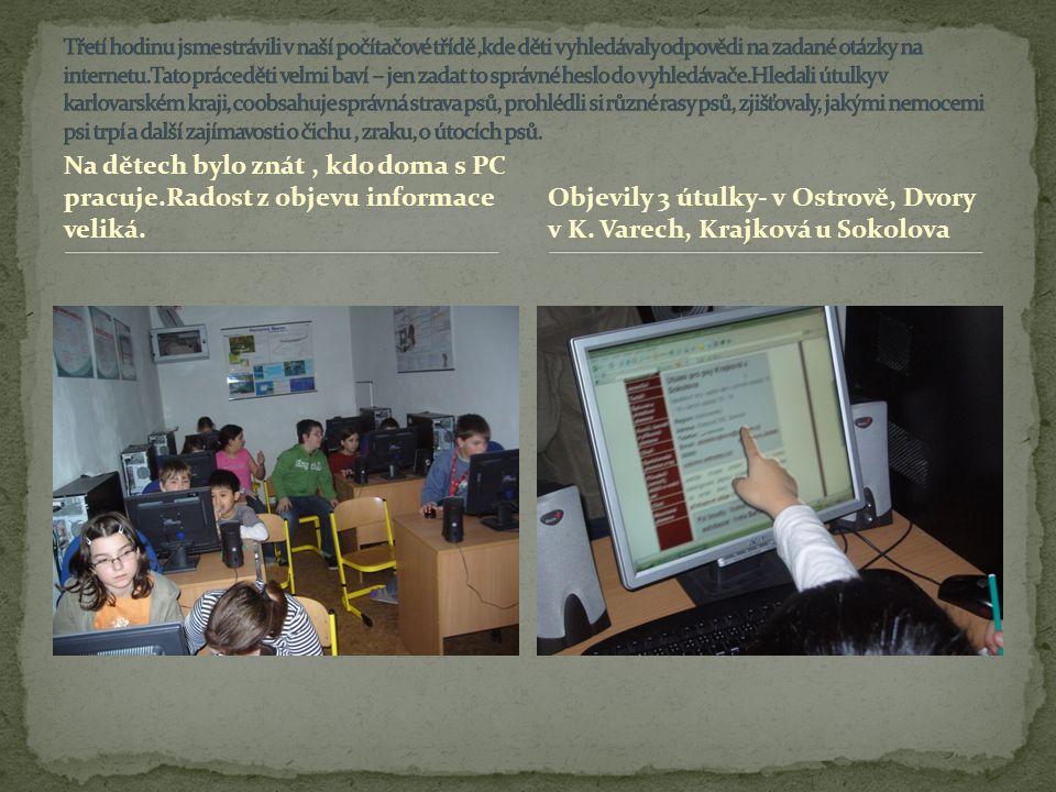 Objevily 3 útulky- v Ostrově, Dvory v K. Varech, Krajková u Sokolova