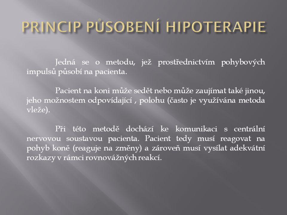 PRINCIP PŮSOBENÍ HIPOTERAPIE