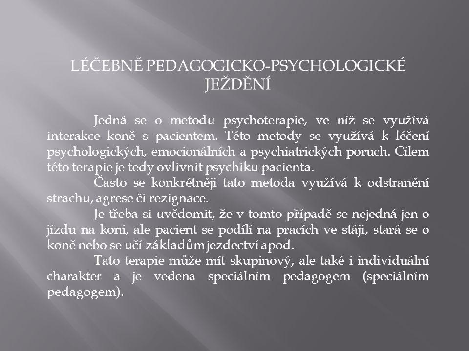 LÉČEBNĚ PEDAGOGICKO-PSYCHOLOGICKÉ JEŽDĚNÍ
