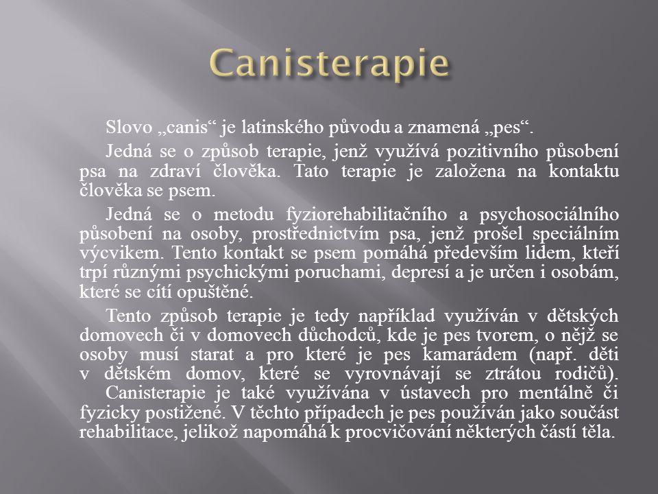 """Canisterapie Slovo """"canis je latinského původu a znamená """"pes ."""