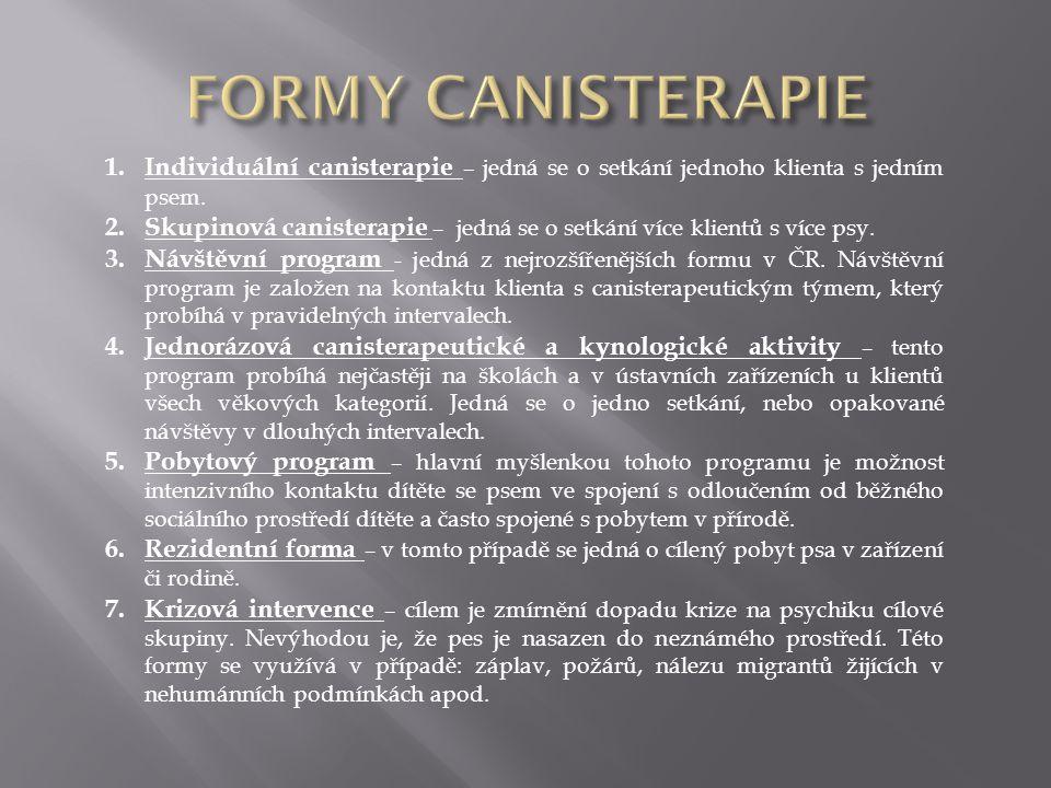FORMY CANISTERAPIE Individuální canisterapie – jedná se o setkání jednoho klienta s jedním psem.