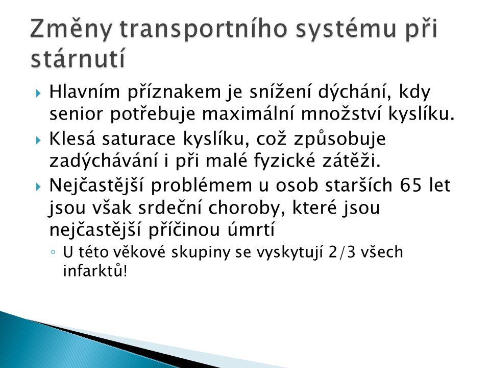 Změny transportního systému při stárnutí