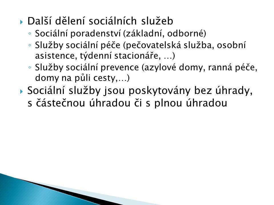 Další dělení sociálních služeb