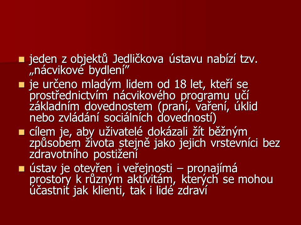 """jeden z objektů Jedličkova ústavu nabízí tzv. """"nácvikové bydlení"""