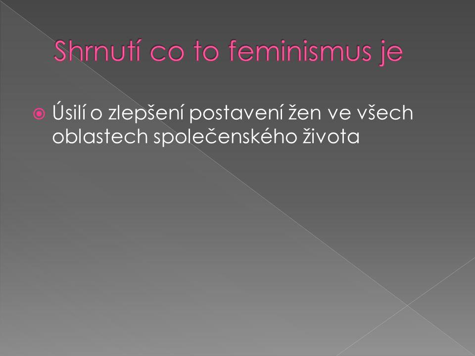 Shrnutí co to feminismus je