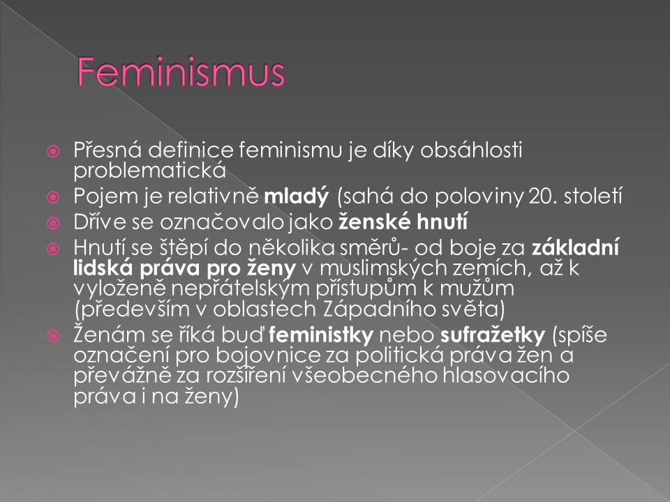 Feminismus Přesná definice feminismu je díky obsáhlosti problematická