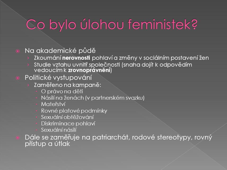 Co bylo úlohou feministek