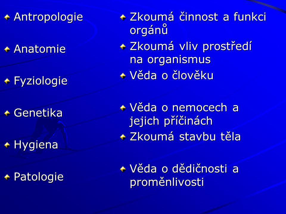 Antropologie Anatomie. Fyziologie. Genetika. Hygiena. Patologie. Zkoumá činnost a funkci orgánů.