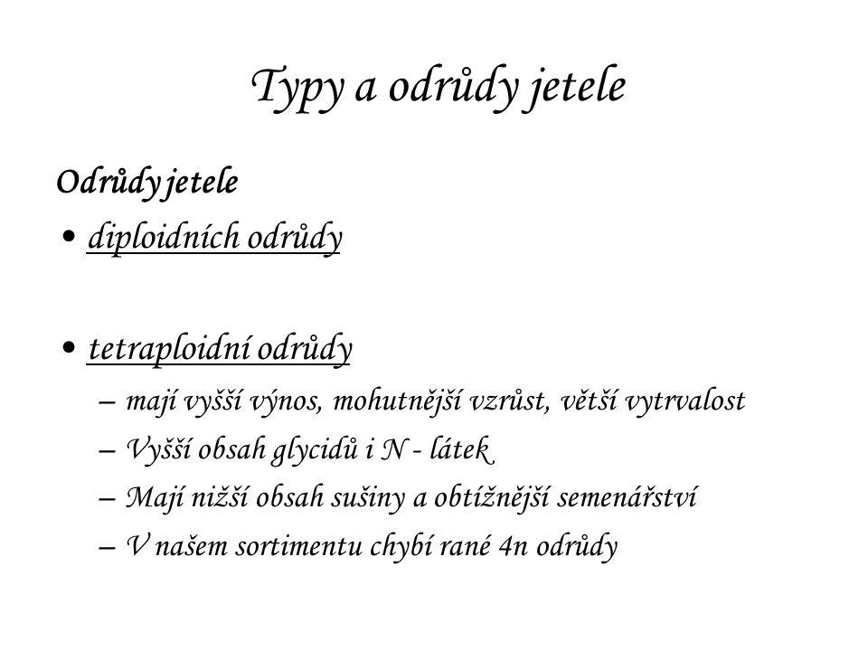 Typy a odrůdy jetele Odrůdy jetele diploidních odrůdy