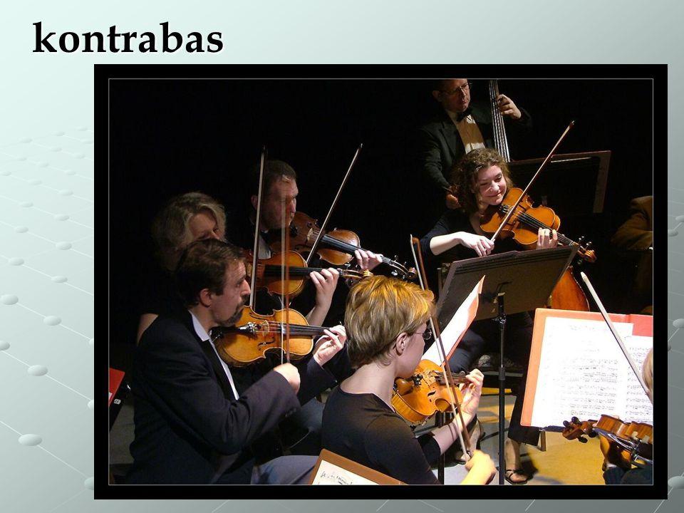 kontrabas Kontrabasista je na snímku vzadu za violistkou.