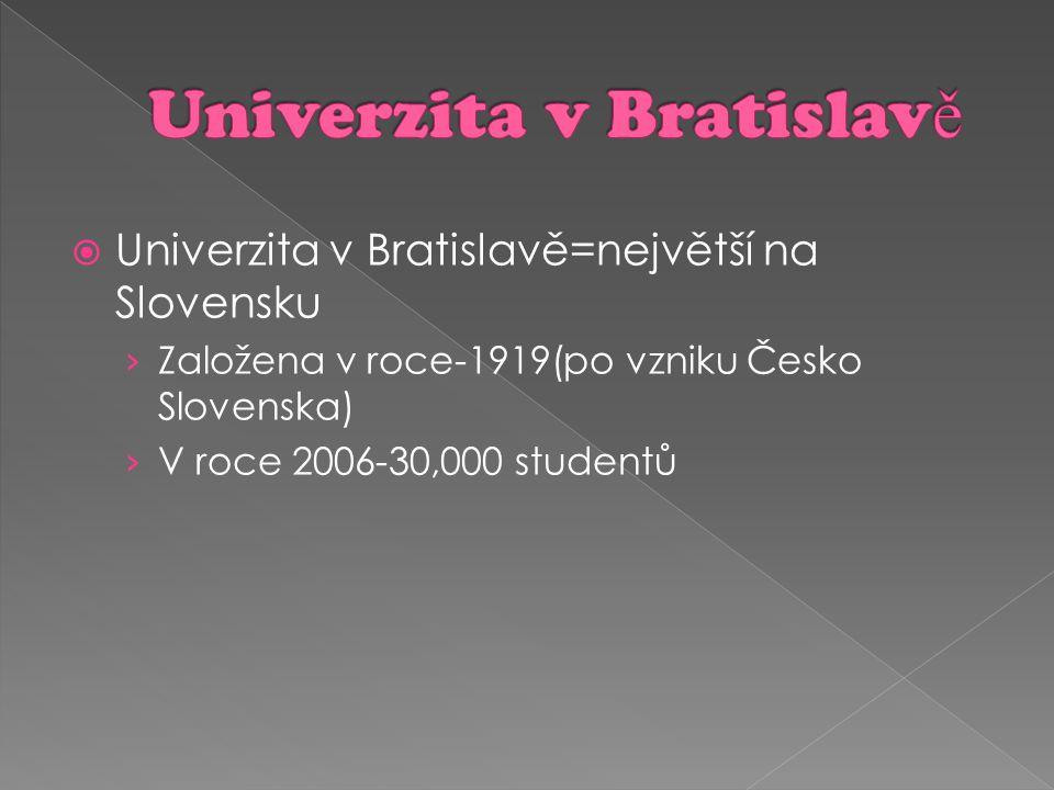 Univerzita v Bratislavě