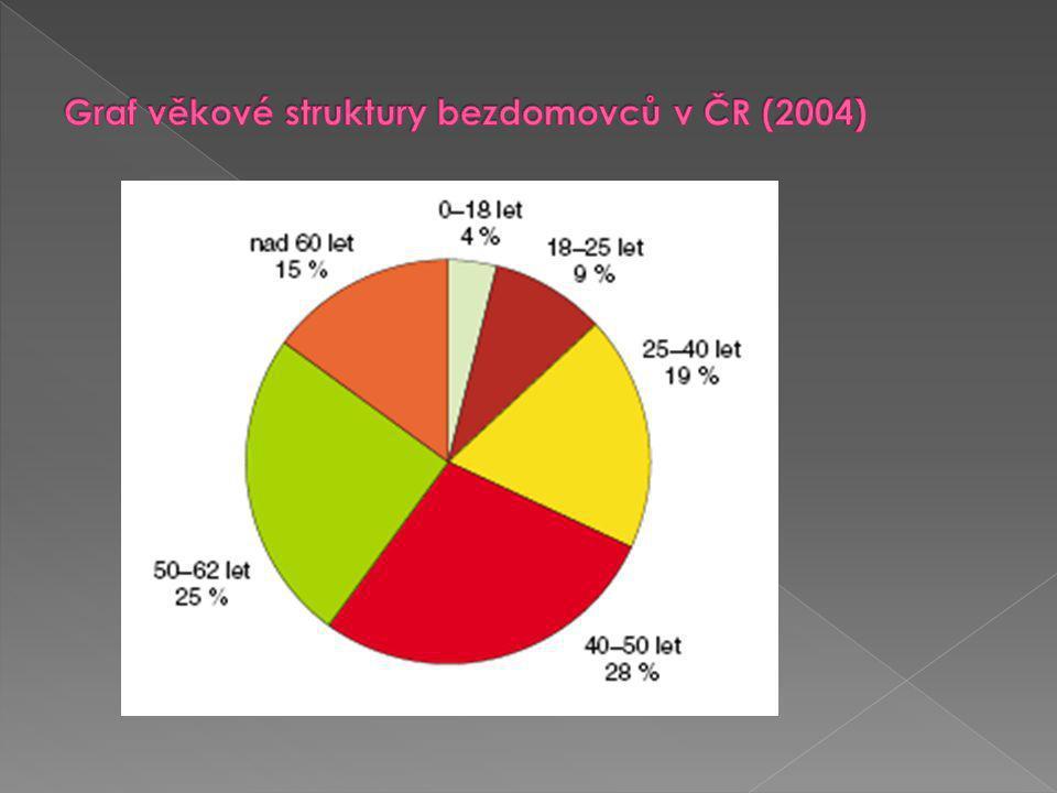 Graf věkové struktury bezdomovců v ČR (2004)