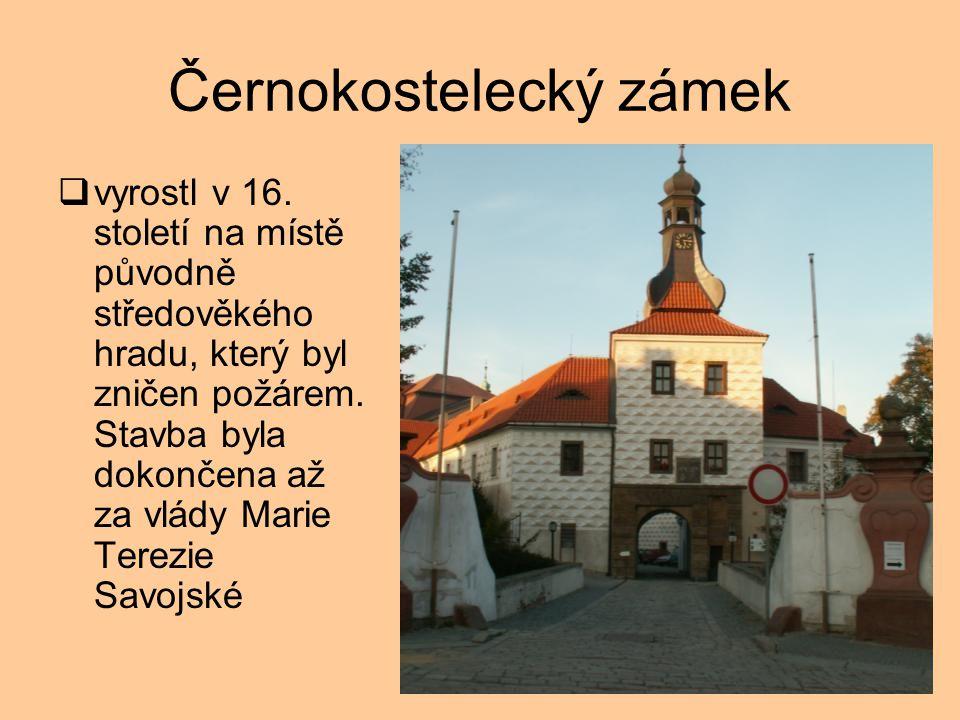 Černokostelecký zámek