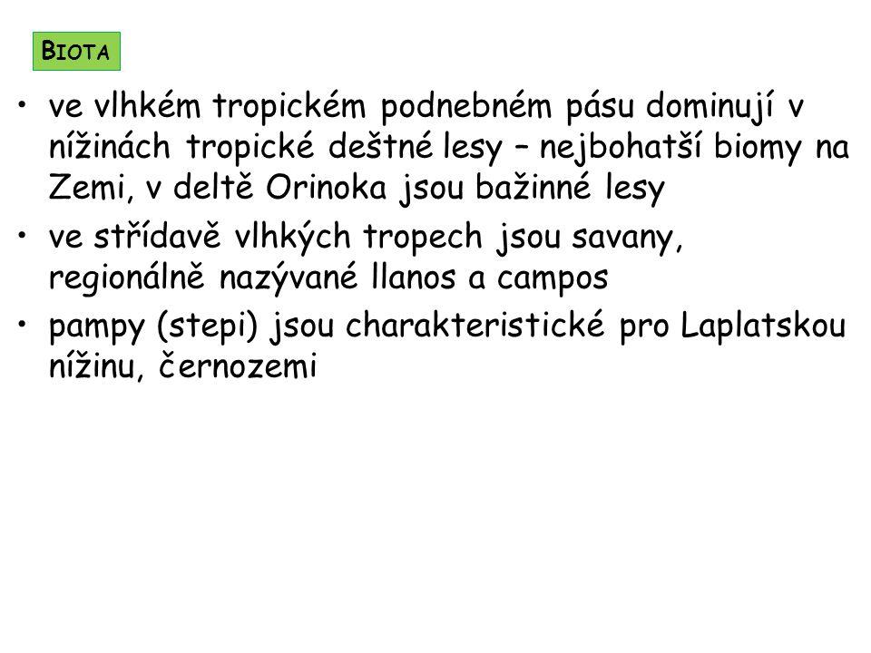 pampy (stepi) jsou charakteristické pro Laplatskou nížinu, černozemi
