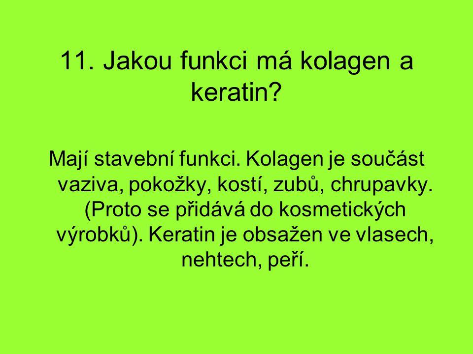 11. Jakou funkci má kolagen a keratin