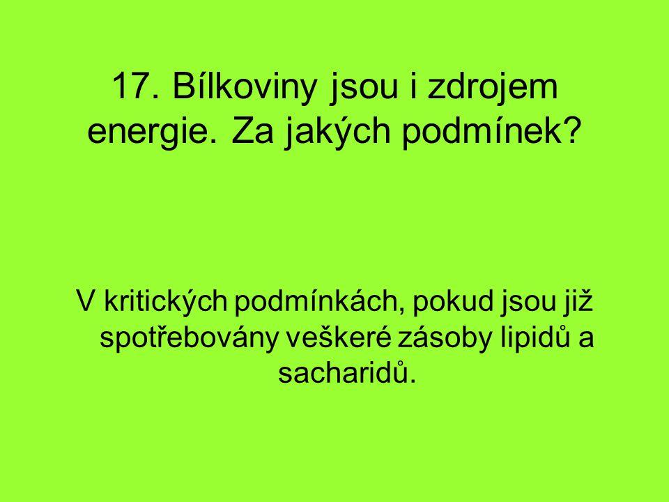 17. Bílkoviny jsou i zdrojem energie. Za jakých podmínek