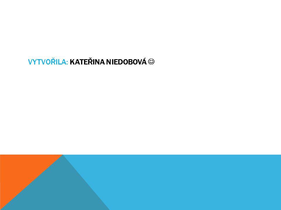 Vytvořila: Kateřina Niedobová 