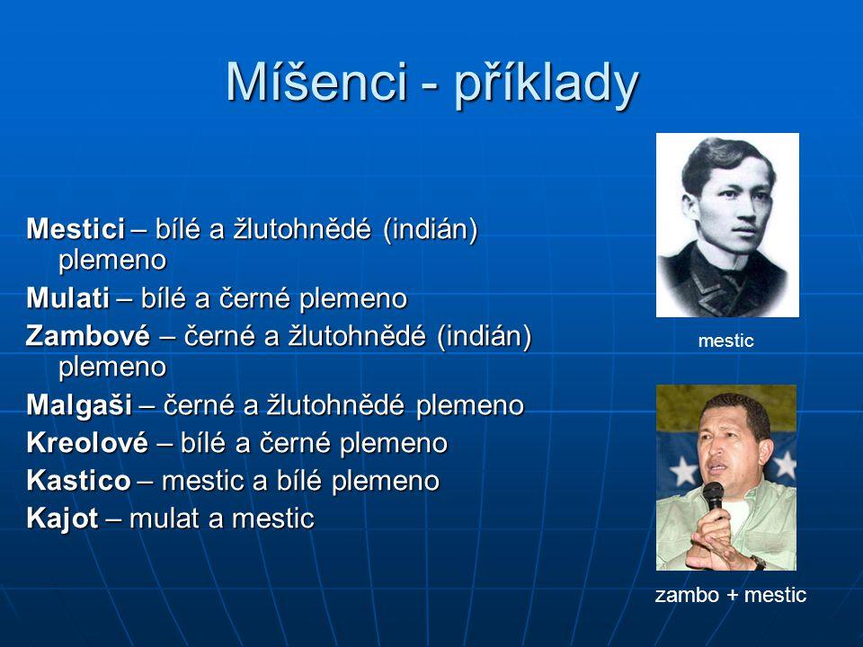 Míšenci - příklady Mestici – bílé a žlutohnědé (indián) plemeno