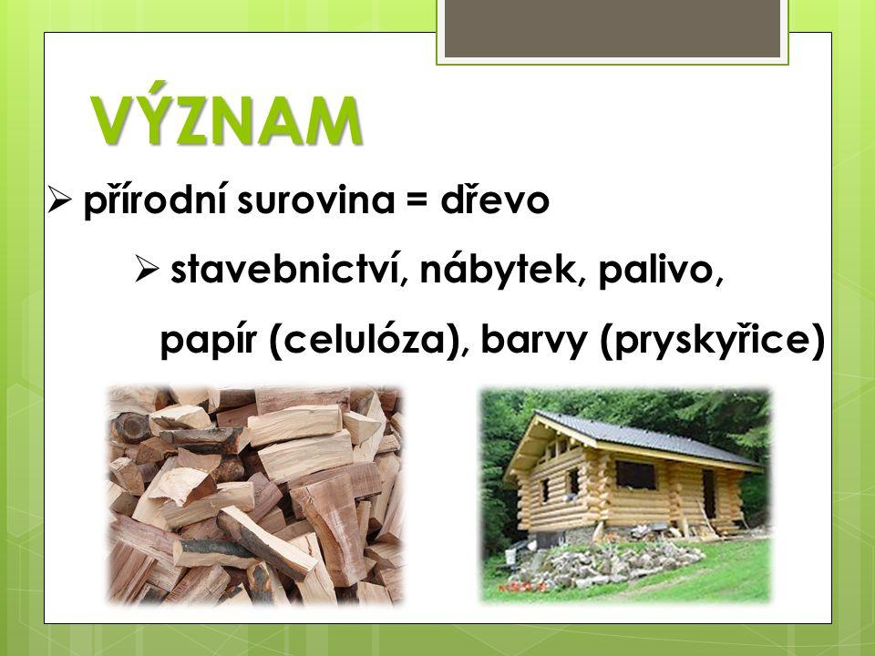 VÝZNAM přírodní surovina = dřevo