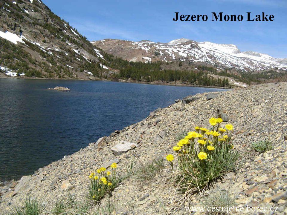 Jezero Mono Lake www.cestujeme.borec.cz