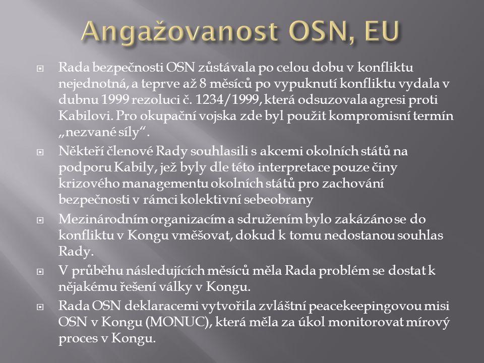 Angažovanost OSN, EU