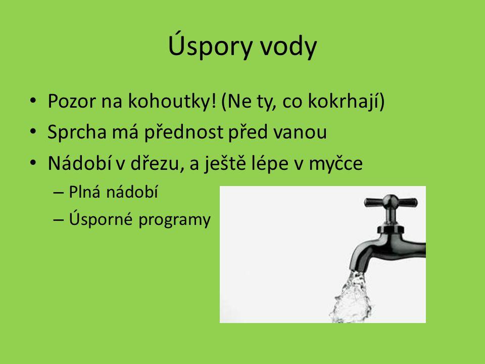 Úspory vody Pozor na kohoutky! (Ne ty, co kokrhají)