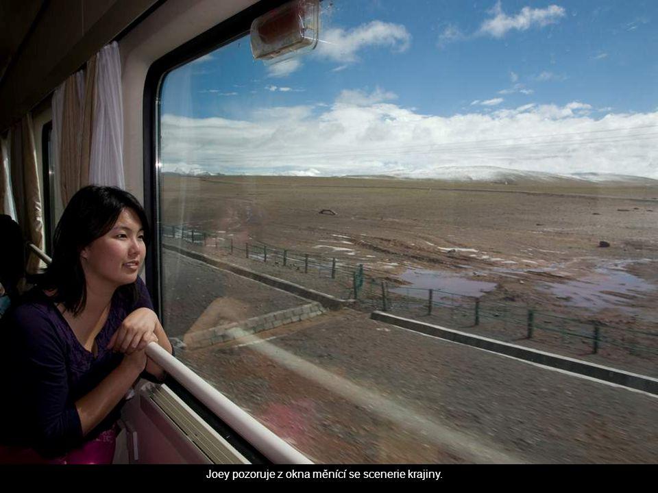 Joey pozoruje z okna měnící se scenerie krajiny.