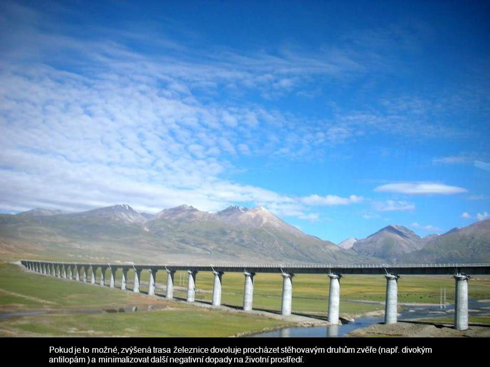 Pokud je to možné, zvýšená trasa železnice dovoluje procházet stěhovavým druhům zvěře (např.