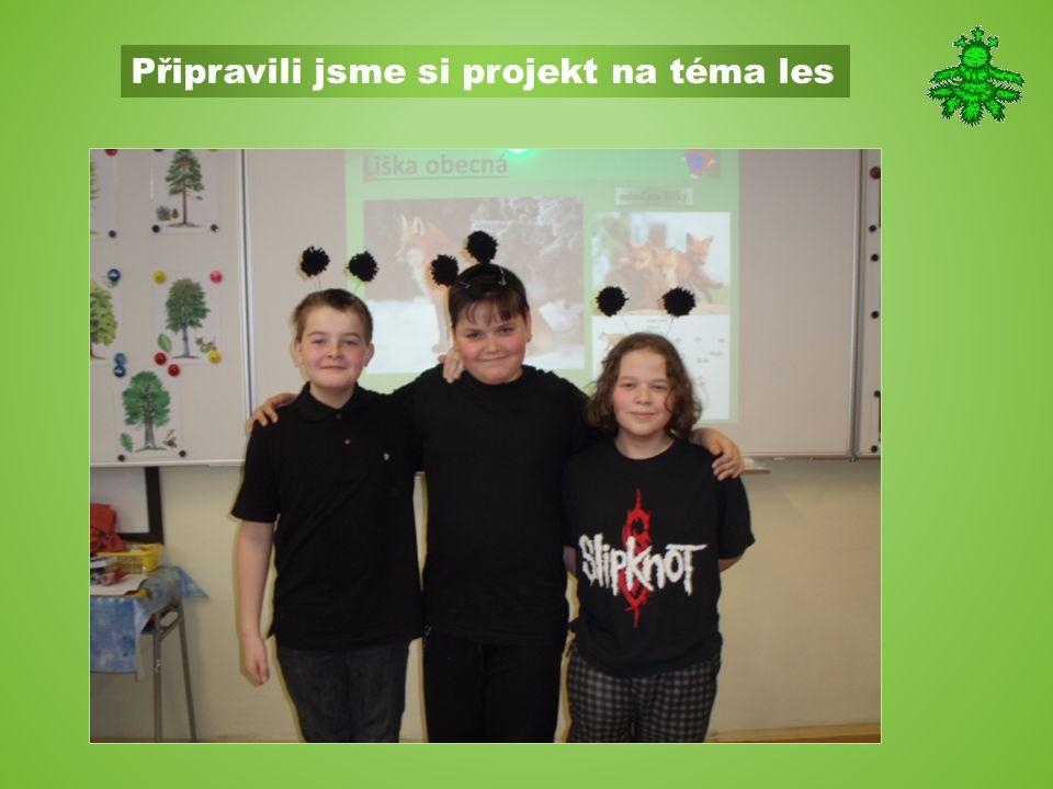 Připravili jsme si projekt na téma les