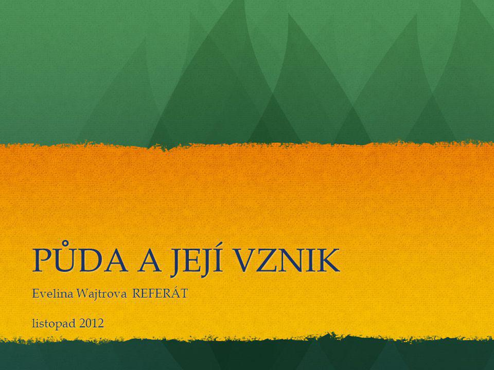 Evelina Wajtrova REFERÁT listopad 2012