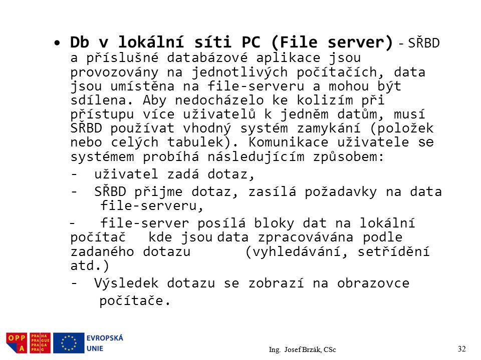 Db v lokální síti PC (File server) - SŘBD a příslušné databázové aplikace jsou provozovány na jednotlivých počítačích, data jsou umístěna na file-serveru a mohou být sdílena. Aby nedocházelo ke kolizím při přístupu více uživatelů k jedněm datům, musí SŘBD používat vhodný systém zamykání (položek nebo celých tabulek). Komunikace uživatele se systémem probíhá následujícím způsobem: