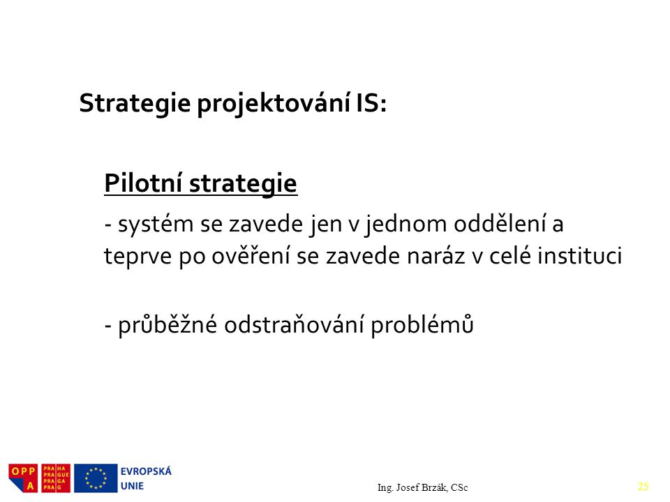 Strategie projektování IS: Pilotní strategie