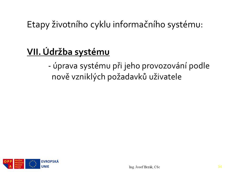 Etapy životního cyklu informačního systému: VII