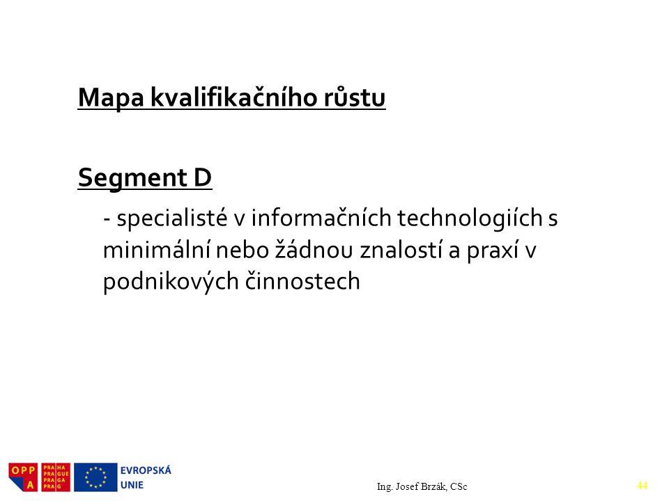 Mapa kvalifikačního růstu Segment D - specialisté v informačních technologiích s minimální nebo žádnou znalostí a praxí v podnikových činnostech
