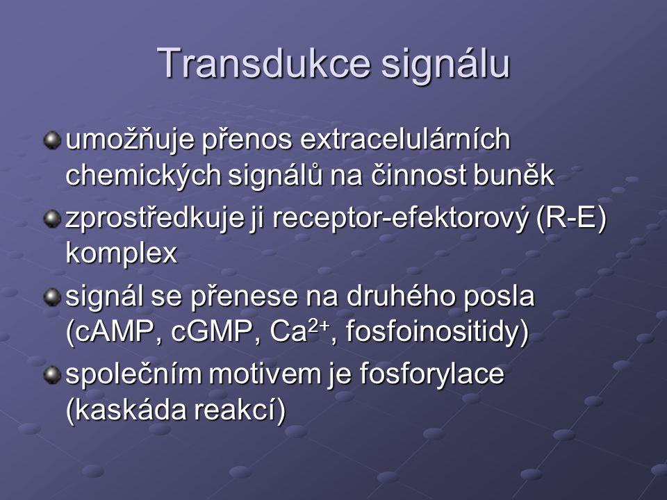 Transdukce signálu umožňuje přenos extracelulárních chemických signálů na činnost buněk. zprostředkuje ji receptor-efektorový (R-E) komplex.