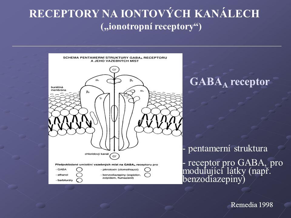 """RECEPTORY NA IONTOVÝCH KANÁLECH (""""ionotropní receptory )"""