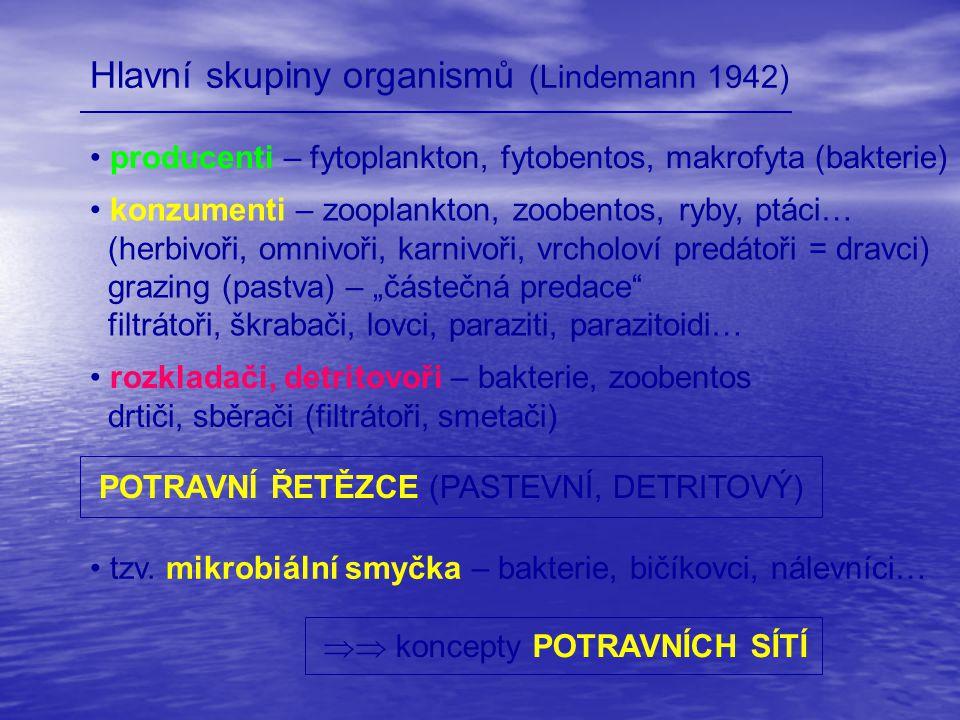 Hlavní skupiny organismů (Lindemann 1942)