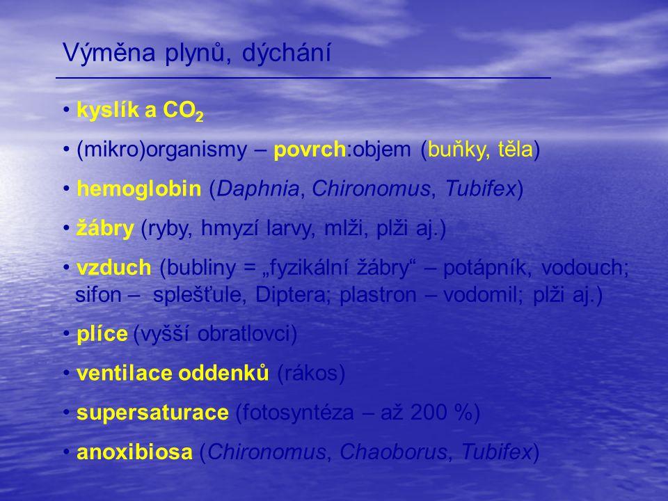 Výměna plynů, dýchání kyslík a CO2