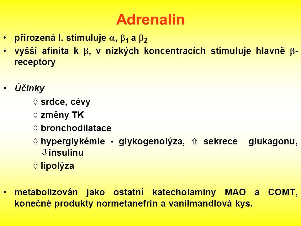 Adrenalin přirozená l. stimuluje a, b1 a b2